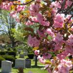 Malden_cemetery
