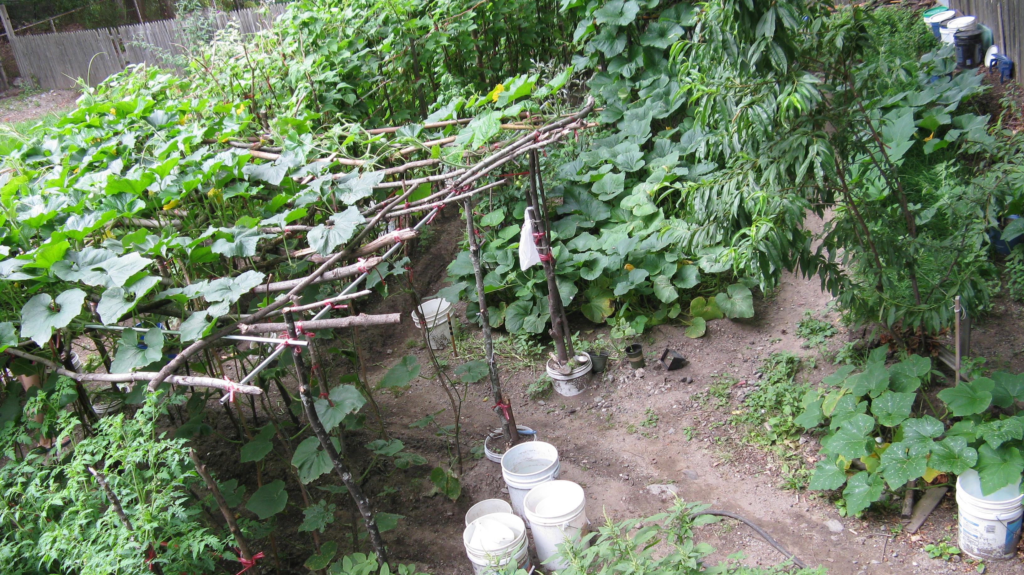 Anatomy Of A Chinese Garden Yan And Maggies Malden