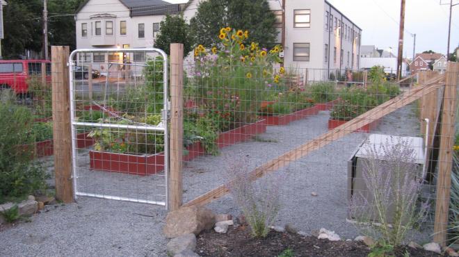 Community_Garden_by_Liz