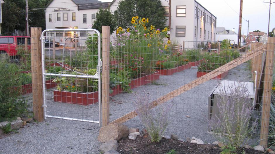 Community_Garden_by_Liz