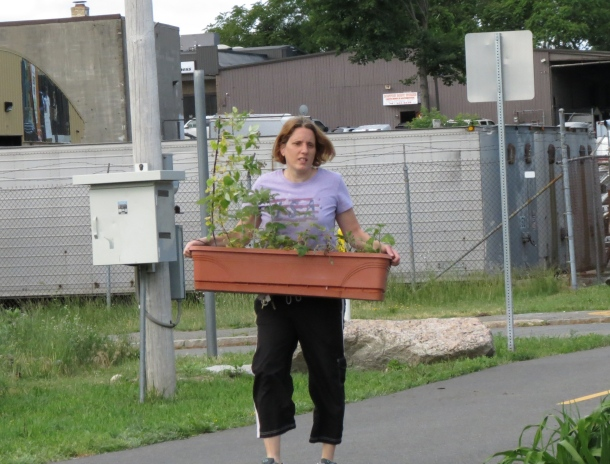 foogi-plant-swap2