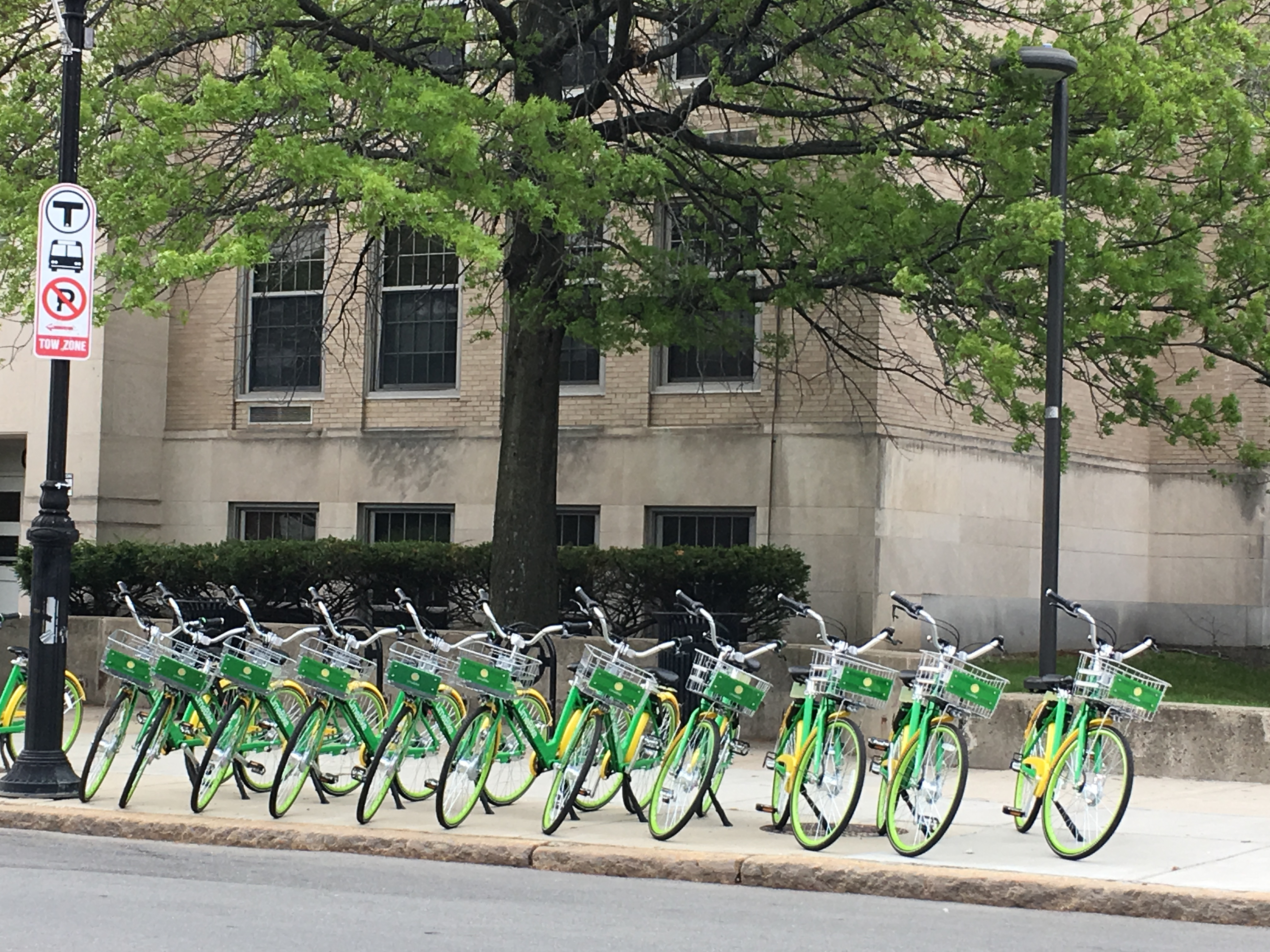 Bike, Zip and More: How Malden can share the road for smarter transportation