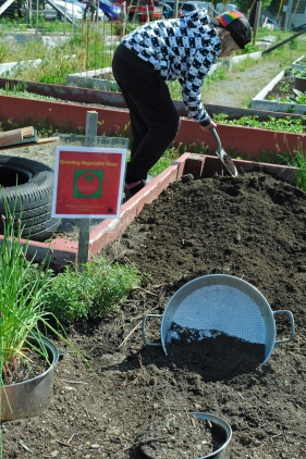 "Preparing the ""vegetable soup"" garden"