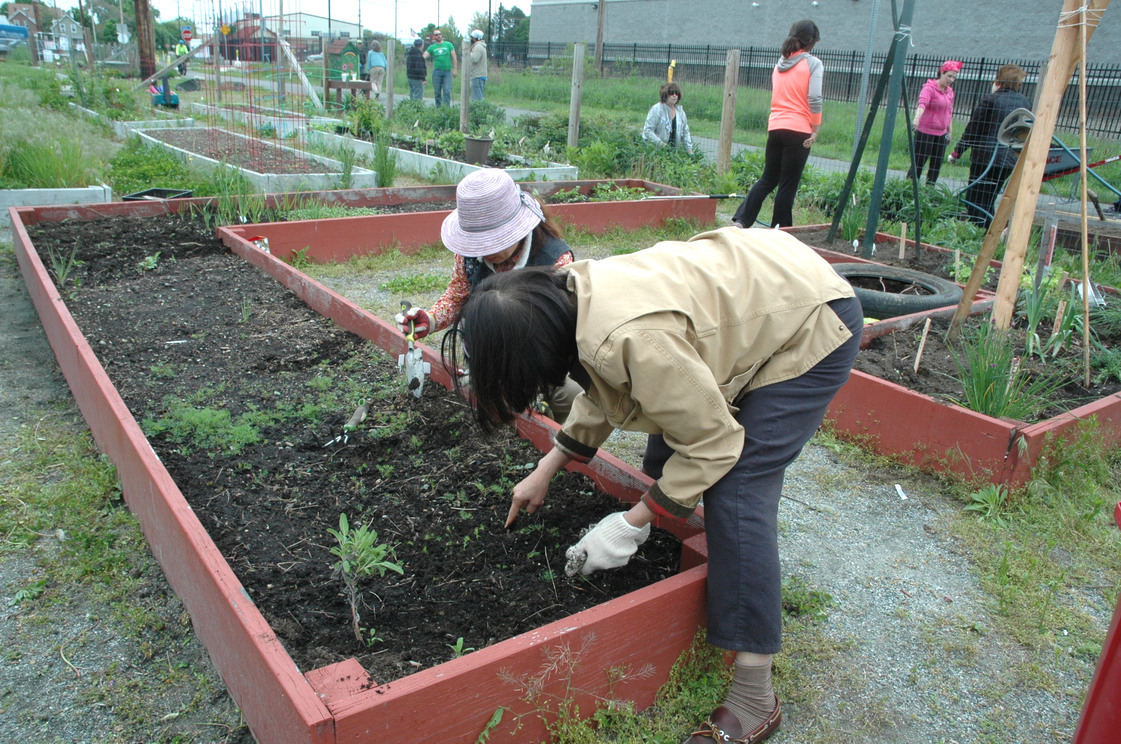 Let your garden grow: Season begins at the Malden Community Garden